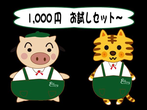1000 2